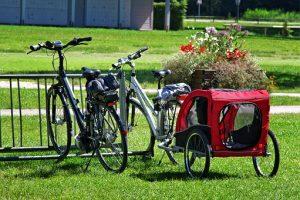 Pourquoi acheter une remorque de vélo pour enfant ?